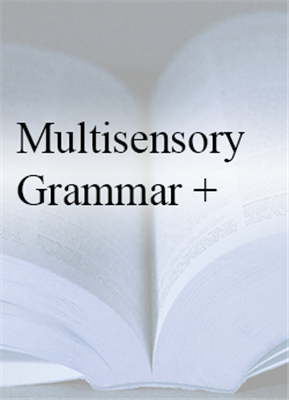 Multisensory Grammar  + PLUS - In House