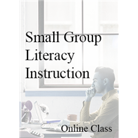 Small Group Literacy Instruction Modules - On-demand
