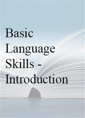 Basic Language Skills - Introduction (Level 1) - In House